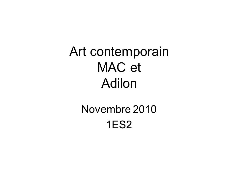 Art contemporain MAC et Adilon Novembre 2010 1ES2