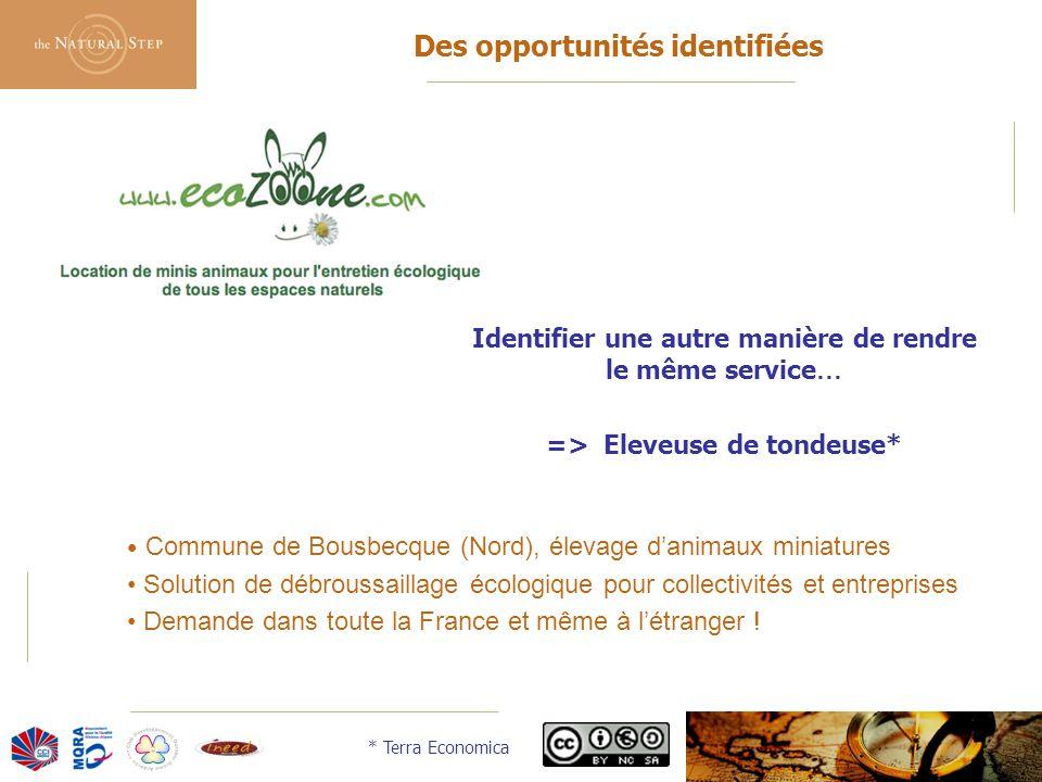 © 2006 The Natural Step France Des opportunités identifiées Identifier une autre manière de rendre le même service … => Eleveuse de tondeuse* Commune
