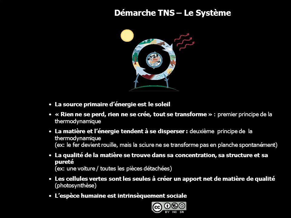 © 2006 The Natural Step France Démarche TNS – Le Système La source primaire d'énergie est le soleil « Rien ne se perd, rien ne se crée, tout se transforme » : premier principe de la thermodynamique La matière et l'énergie tendent à se disperser : deuxième principe de la thermodynamique (ex: le fer devient rouille, mais la sciure ne se transforme pas en planche spontanément) La qualité de la matière se trouve dans sa concentration, sa structure et sa pureté (ex: une voiture / toutes les pièces détachées) Les cellules vertes sont les seules à créer un apport net de matière de qualité (photosynthèse) L'espèce humaine est intrinsèquement sociale