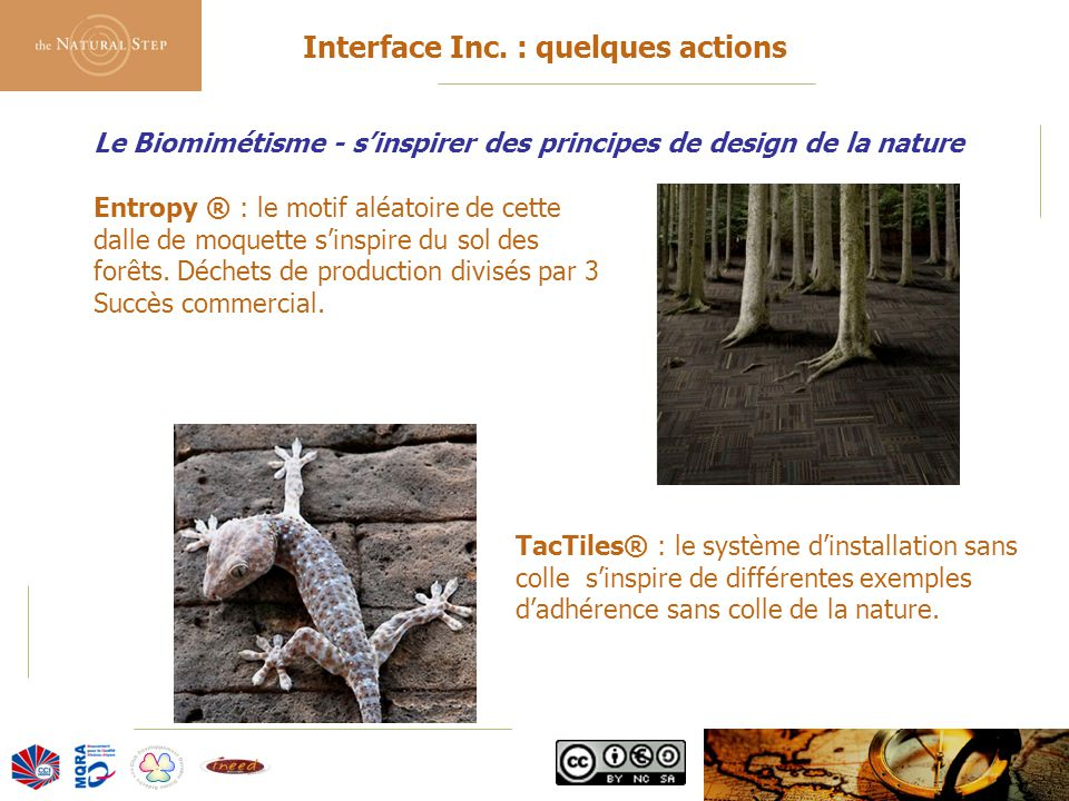 © 2006 The Natural Step France Le Biomimétisme - s'inspirer des principes de design de la nature Interface Inc. : quelques actions Entropy ® : le moti