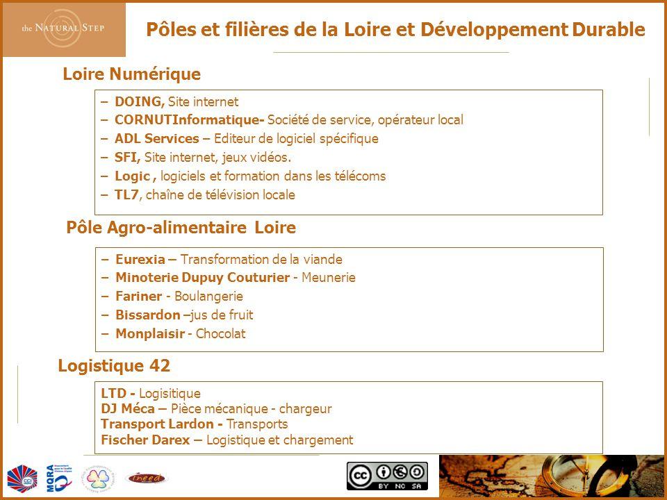 © 2006 The Natural Step France Pôles et filières de la Loire et Développement Durable –DOING, Site internet –CORNUTInformatique- Société de service, opérateur local –ADL Services – Editeur de logiciel spécifique –SFI, Site internet, jeux vidéos.