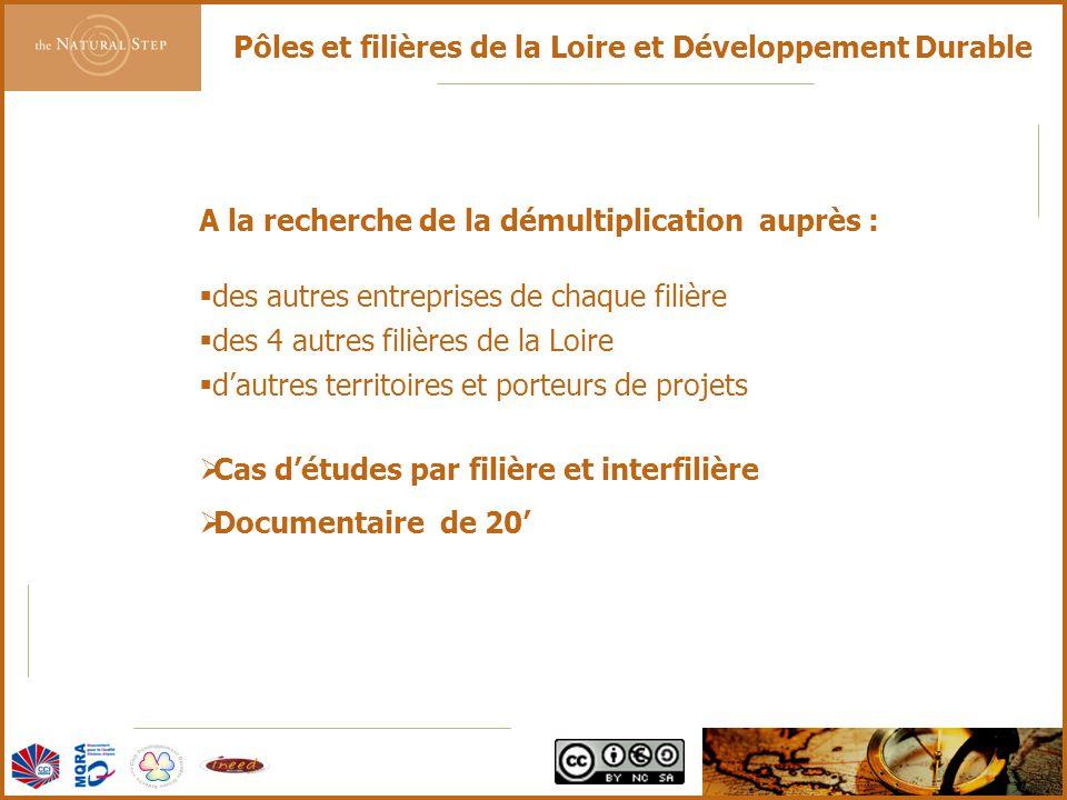 © 2006 The Natural Step France Pôles et filières de la Loire et Développement Durable A la recherche de la démultiplication auprès :  des autres entr
