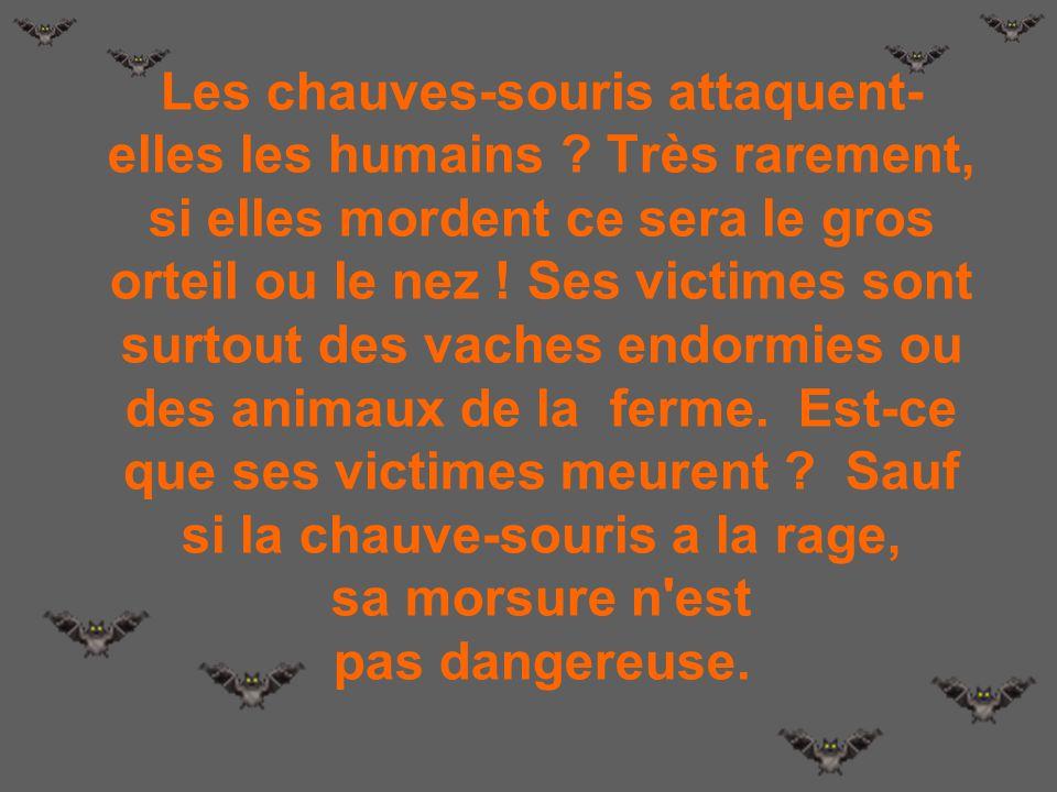 LES VAMPIRES Le soir du 31 octobre, dans certains pays, les gens répandront du riz sec sur le bord des fenêtres, pour éloigner les vampires. Ce n'est