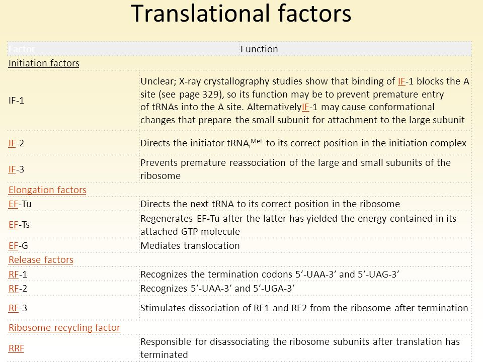 Translational factors FactorFunction Initiation factors IF-1 Unclear; X-ray crystallography studies show that binding of IF-1 blocks the A site (see p