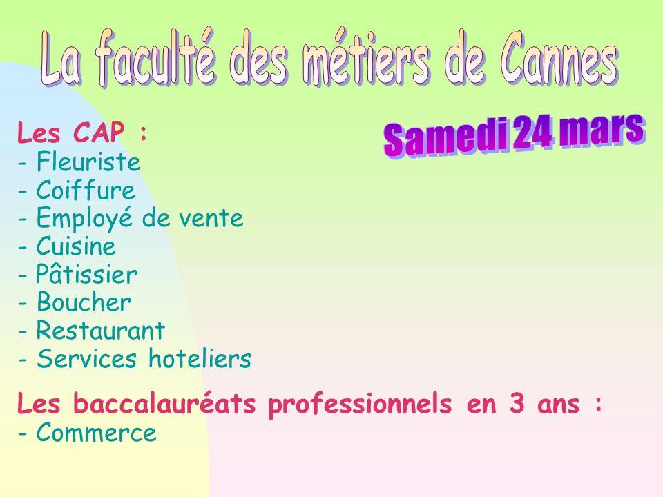 Les CAP : - Fleuriste - Coiffure - Employé de vente - Cuisine - Pâtissier - Boucher - Restaurant - Services hoteliers Les baccalauréats professionnels