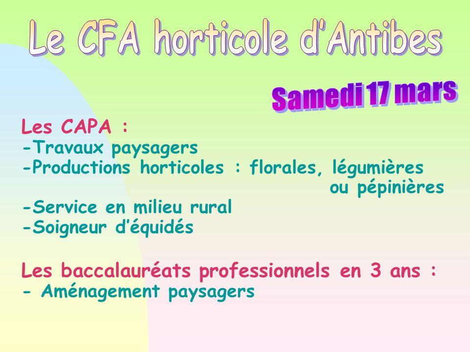 Les CAPA : -Travaux paysagers -Productions horticoles : florales, légumières ou pépinières -Service en milieu rural -Soigneur d'équidés Les baccalauré