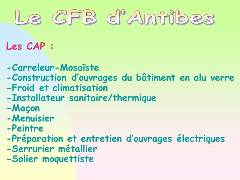 Les CAP : -Carreleur-Mosaïste -Construction d'ouvrages du bâtiment en alu verre -Froid et climatisation -Installateur sanitaire/thermique -Maçon -Menu