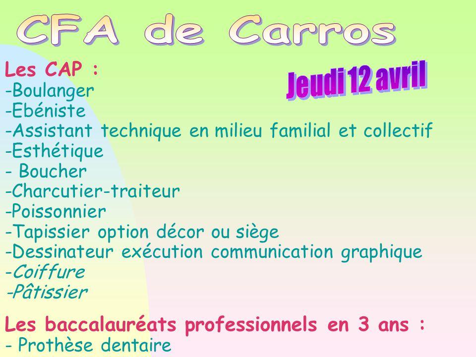 Les CAP : -Boulanger -Ebéniste -Assistant technique en milieu familial et collectif -Esthétique - Boucher -Charcutier-traiteur -Poissonnier -Tapissier