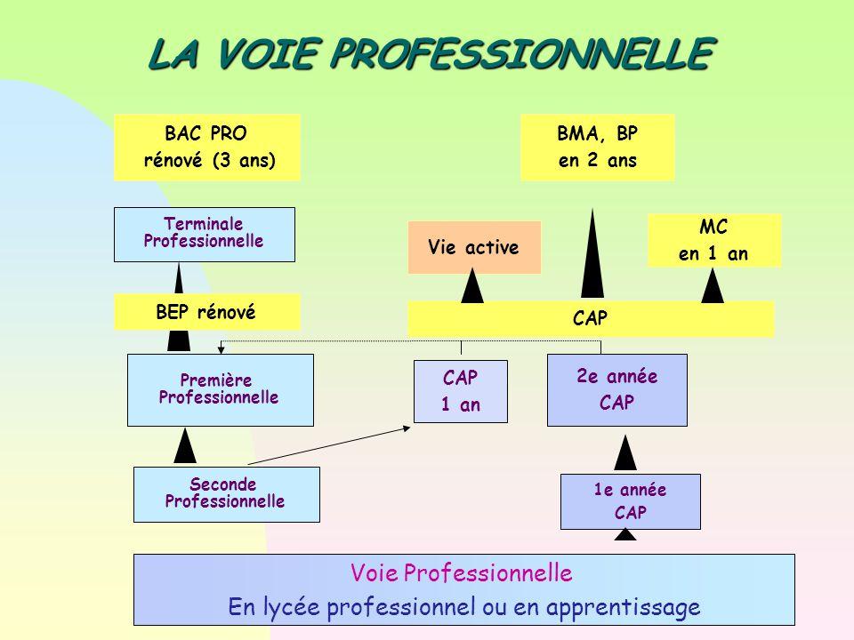 Voie Professionnelle En lycée professionnel ou en apprentissage Seconde Professionnelle Première Professionnelle Terminale Professionnelle 2e année CA