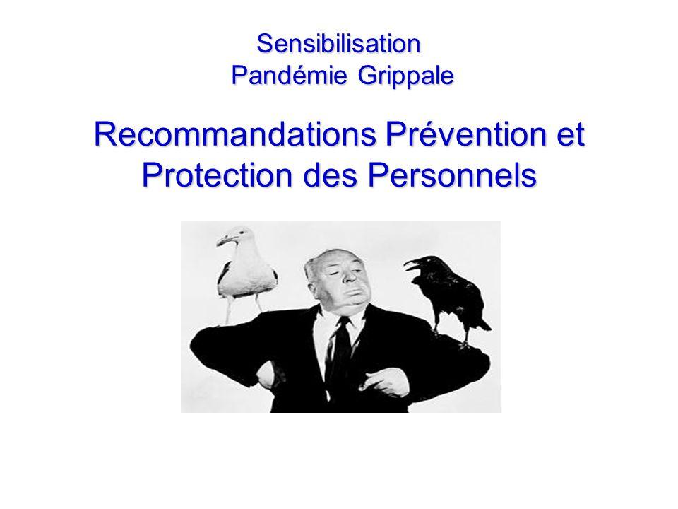 Sensibilisation Pandémie Grippale Recommandations Prévention et Protection des Personnels