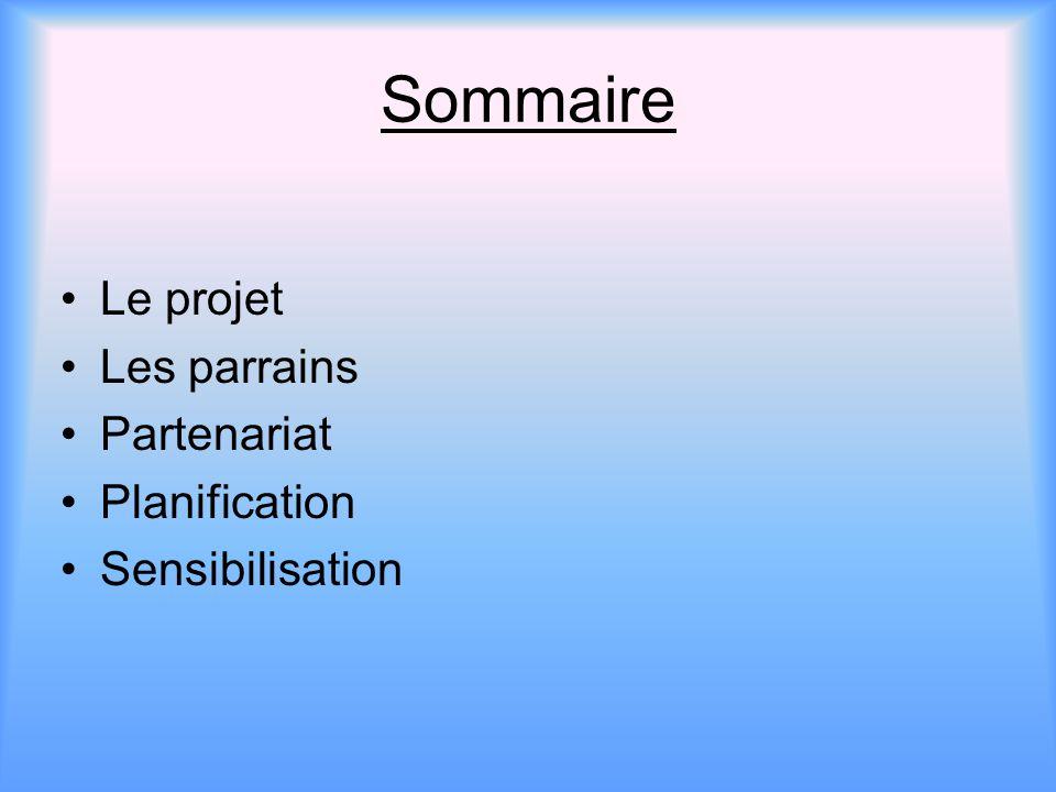 Sommaire Le projet Les parrains Partenariat Planification Sensibilisation