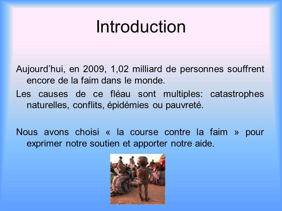 Introduction Aujourd'hui, en 2009, 1,02 milliard de personnes souffrent encore de la faim dans le monde. Les causes de ce fléau sont multiples: catast