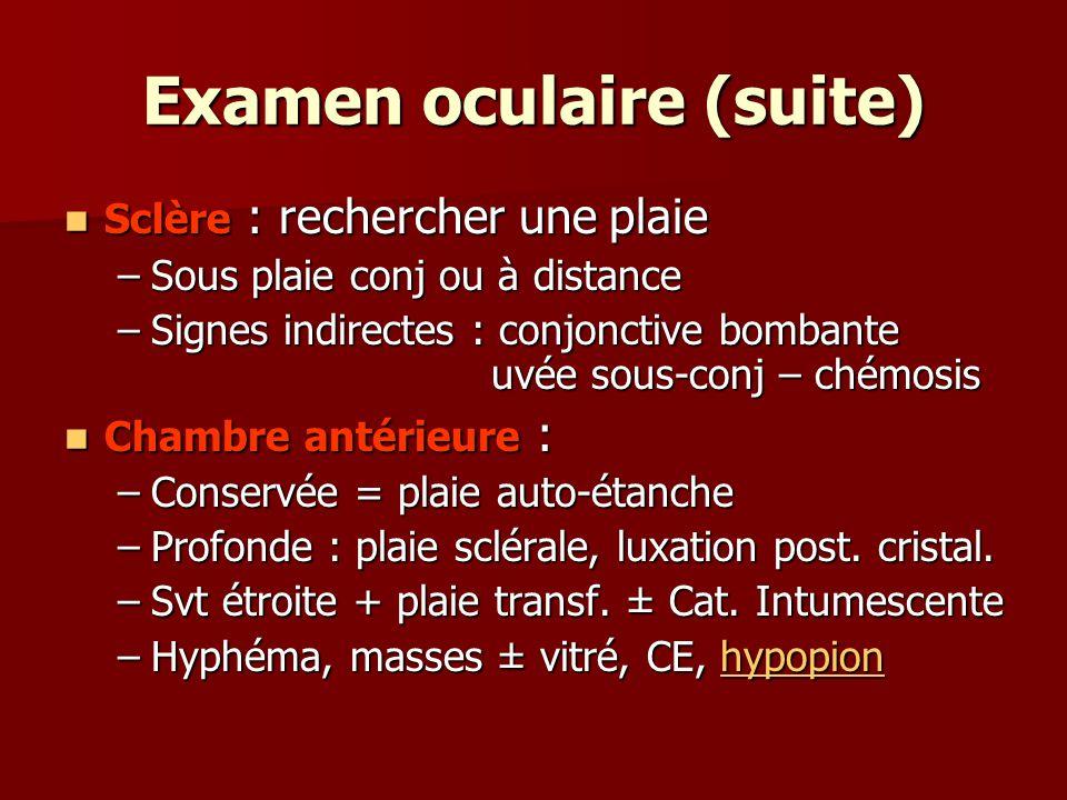Examen oculaire (suite) Sclère : rechercher une plaie Sclère : rechercher une plaie –Sous plaie conj ou à distance –Signes indirectes : conjonctive bo