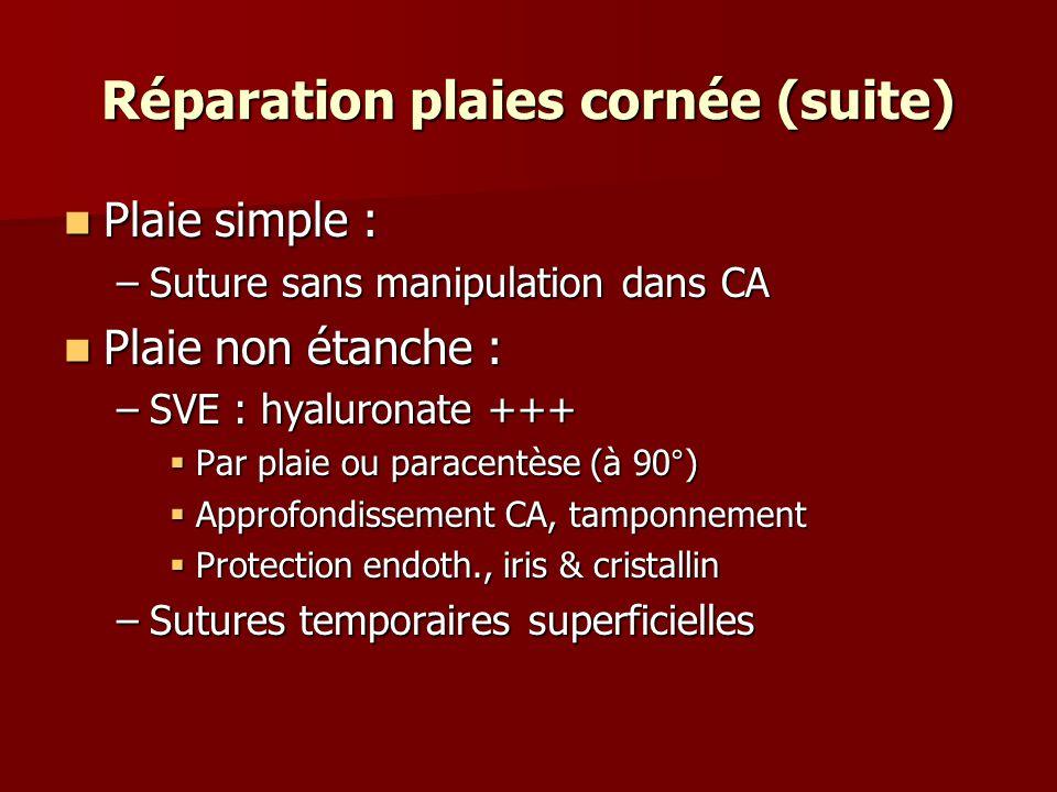 Réparation plaies cornée (suite) Plaie simple : Plaie simple : –Suture sans manipulation dans CA Plaie non étanche : Plaie non étanche : –SVE : hyalur