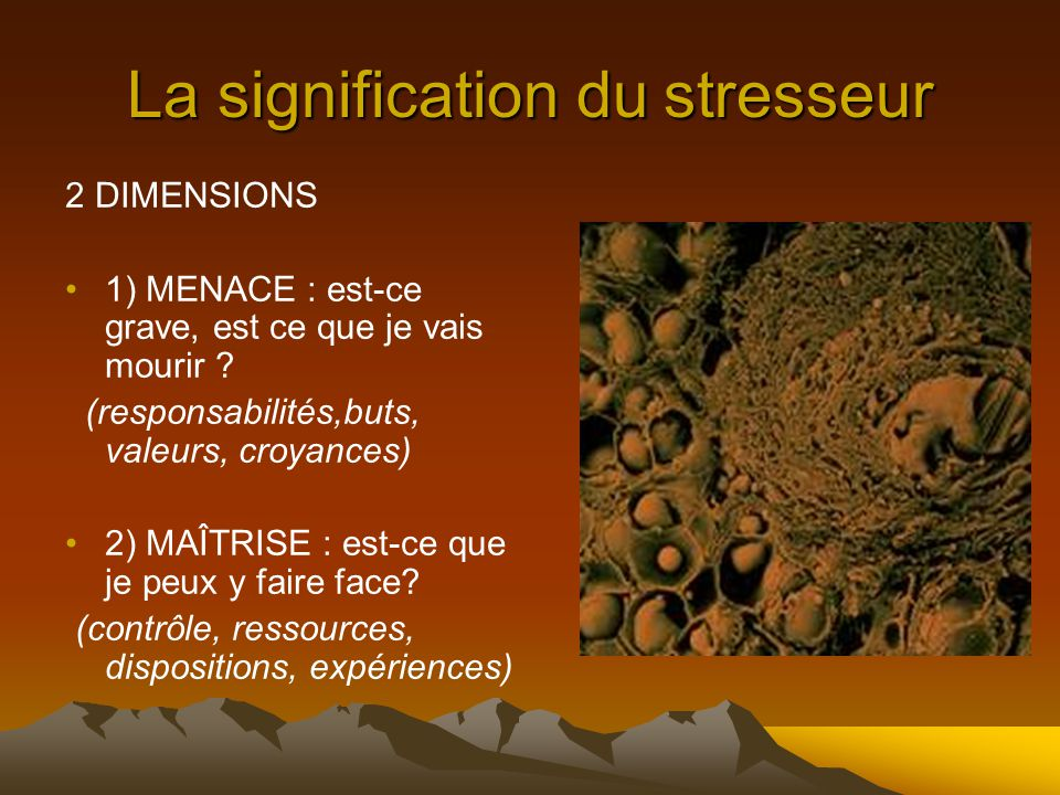 La signification du stresseur 2 DIMENSIONS 1) MENACE : est-ce grave, est ce que je vais mourir .
