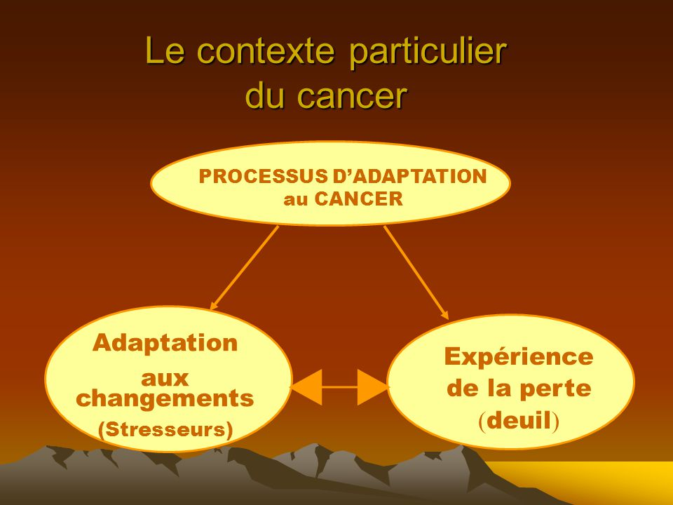 Le contexte particulier du cancer PROCESSUS D'ADAPTATION au CANCER Adaptation aux changements (Stresseurs) Expérience de la perte ( deuil )