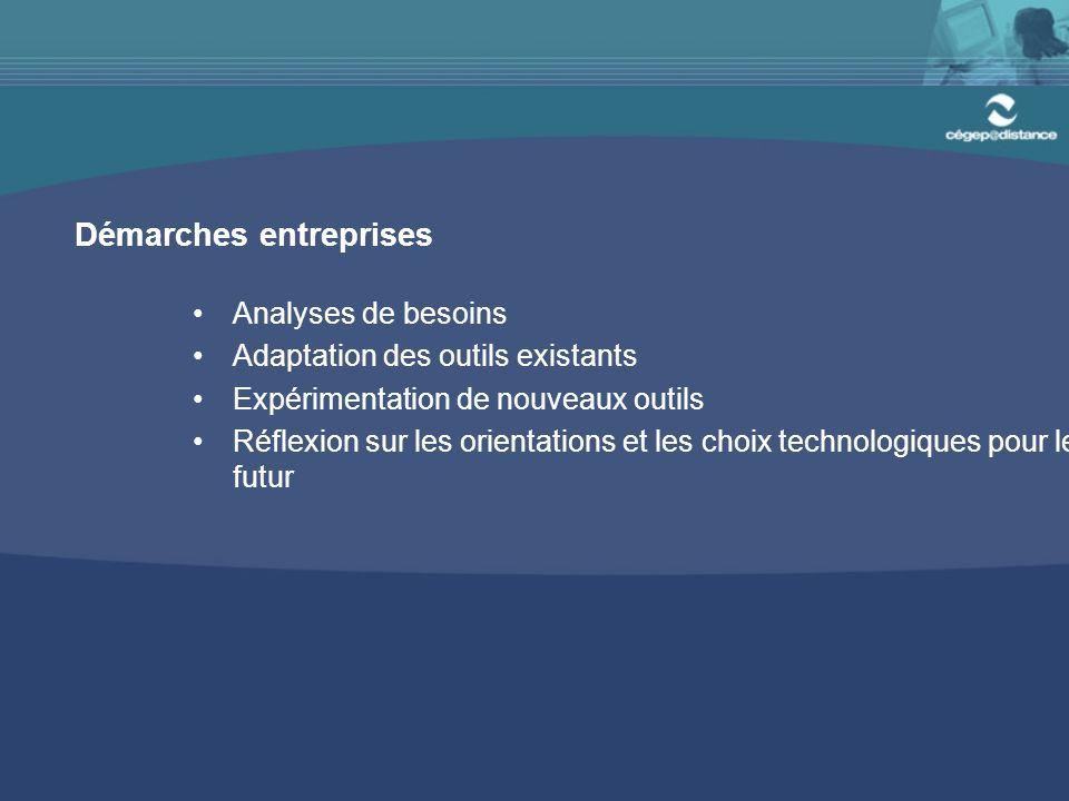 Démarches entreprises Analyses de besoins Adaptation des outils existants Expérimentation de nouveaux outils Réflexion sur les orientations et les choix technologiques pour le futur
