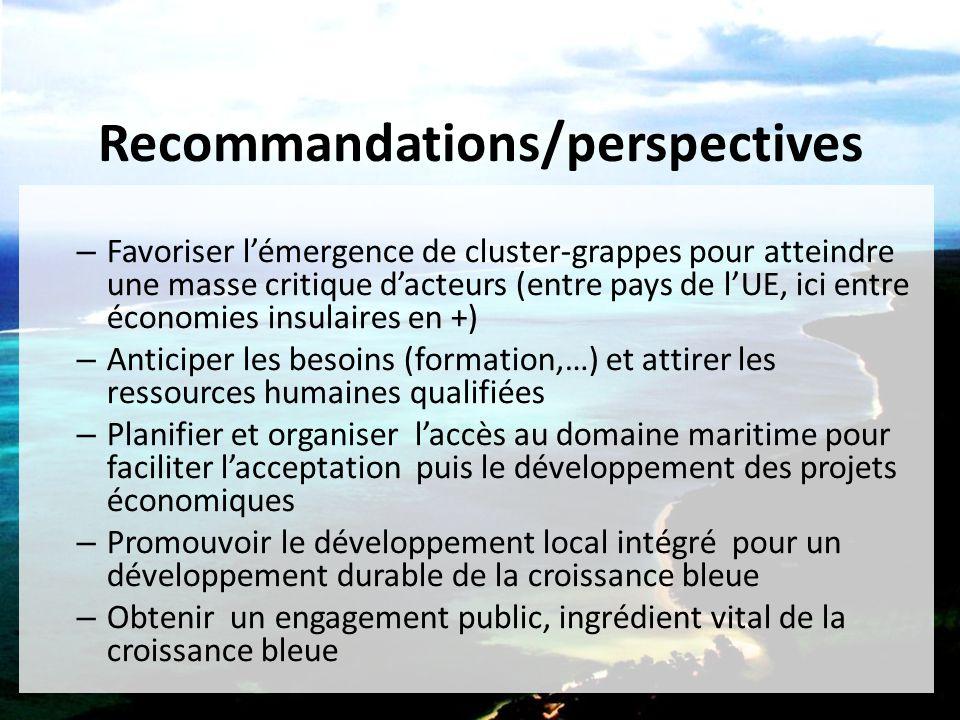 Recommandations/perspectives – Favoriser l'émergence de cluster-grappes pour atteindre une masse critique d'acteurs (entre pays de l'UE, ici entre éco
