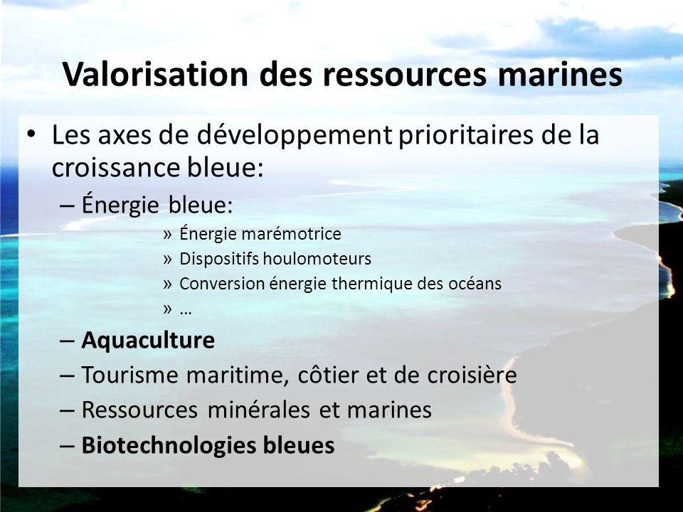 Valorisation des ressources marines Les axes de développement prioritaires de la croissance bleue: – Énergie bleue: » Énergie marémotrice » Dispositif