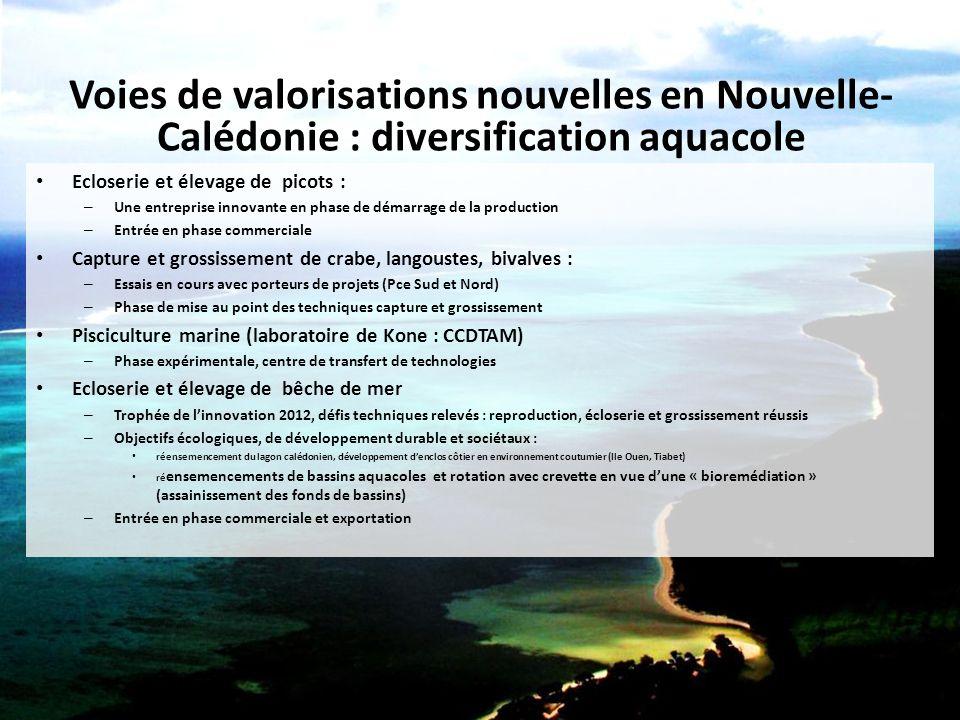 Voies de valorisations nouvelles en Nouvelle- Calédonie : diversification aquacole Ecloserie et élevage de picots : – Une entreprise innovante en phas