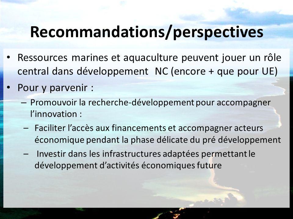 Recommandations/perspectives – Favoriser l'émergence de cluster-grappes pour atteindre une masse critique d'acteurs (entre pays de l'UE, ici entre économies insulaires en +) – Anticiper les besoins (formation,…) et attirer les ressources humaines qualifiées – Planifier et organiser l'accès au domaine maritime pour faciliter l'acceptation puis le développement des projets économiques – Promouvoir le développement local intégré pour un développement durable de la croissance bleue – Obtenir un engagement public, ingrédient vital de la croissance bleue