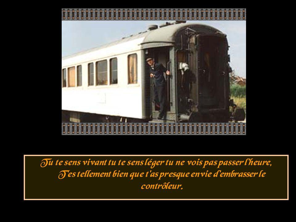 Car les trains sont capricieux et certains sont inaccessibles, Et je ne crois pas tout le temps qu avec la SNCF c est possible.
