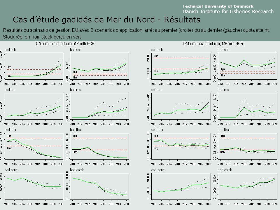 Technical University of Denmark Danish Institute for Fisheries Research Cas d'étude gadidés de Mer du Nord - Résultats Résultats du scénario de gestion EU avec 2 scenarios d'application: arrêt au premier (droite) ou au dernier (gauche) quota atteint.