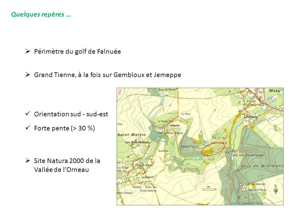 Quelques repères …  Périmètre du golf de Falnuée  Grand Tienne, à la fois sur Gembloux et Jemeppe  Site Natura 2000 de la Vallée de l'Orneau Orient