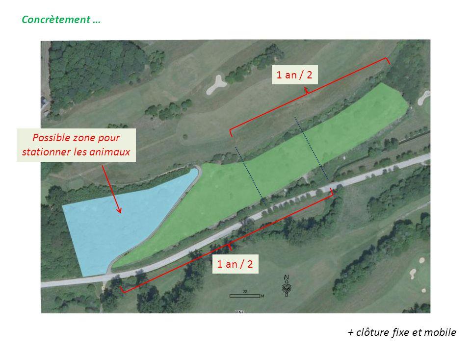 Concrètement … Possible zone pour stationner les animaux 1 an / 2 + clôture fixe et mobile