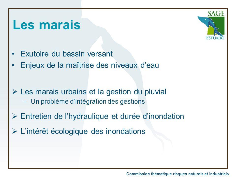 Commission thématique risques naturels et industriels Les marais Exutoire du bassin versant Enjeux de la maîtrise des niveaux d'eau  Les marais urbai