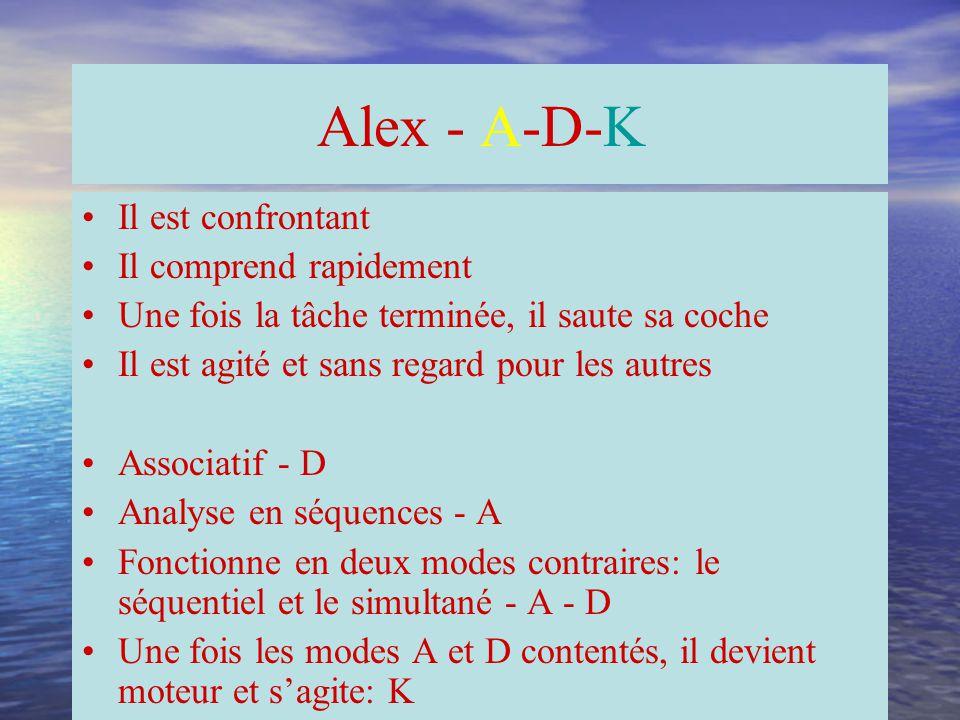 Audrey - A-D-B Elle est confrontante Elle comprend rapidement Elle se met à la tâche facilement Elle n'aime pas travailler en équipe Associatif - D Analyse en séquences - A Fonctionne en deux modes contraires: le séquentiel et le simultané - A - D Modes abstrait et imagé et concret : A- D-B
