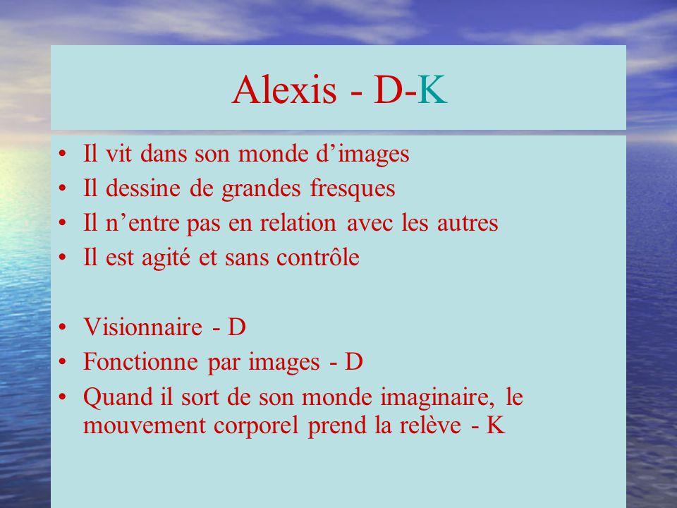 Alex - A-D-K Il est confrontant Il comprend rapidement Une fois la tâche terminée, il saute sa coche Il est agité et sans regard pour les autres Associatif - D Analyse en séquences - A Fonctionne en deux modes contraires: le séquentiel et le simultané - A - D Une fois les modes A et D contentés, il devient moteur et s'agite: K