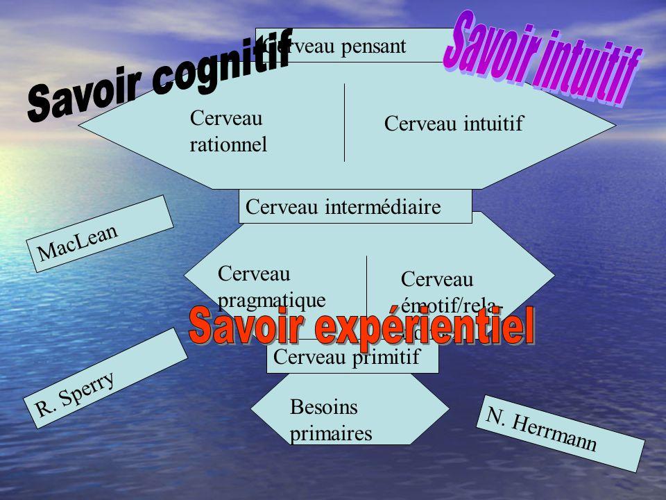 Cerveau pensant Cerveau rationnel Cerveau intuitif Cerveau intermédiaire Cerveau pragmatique Cerveau émotif/rela- tionnel Cerveau primitif Besoins primaires