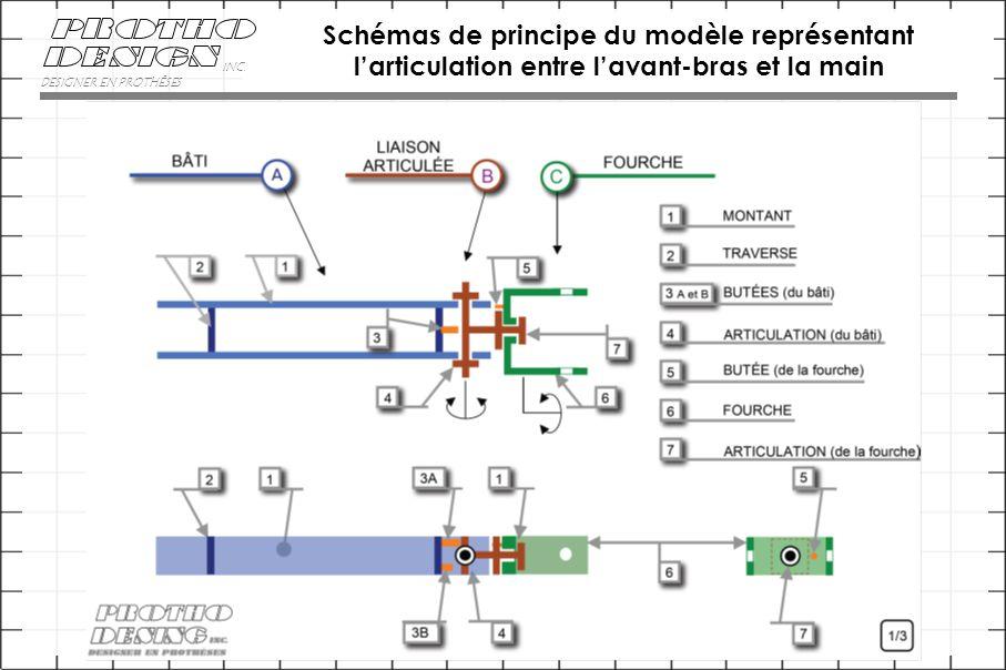 Schémas de principe du modèle représentant l'articulation entre l'avant-bras et la main DESIGNER EN PROTHÈSES INC.