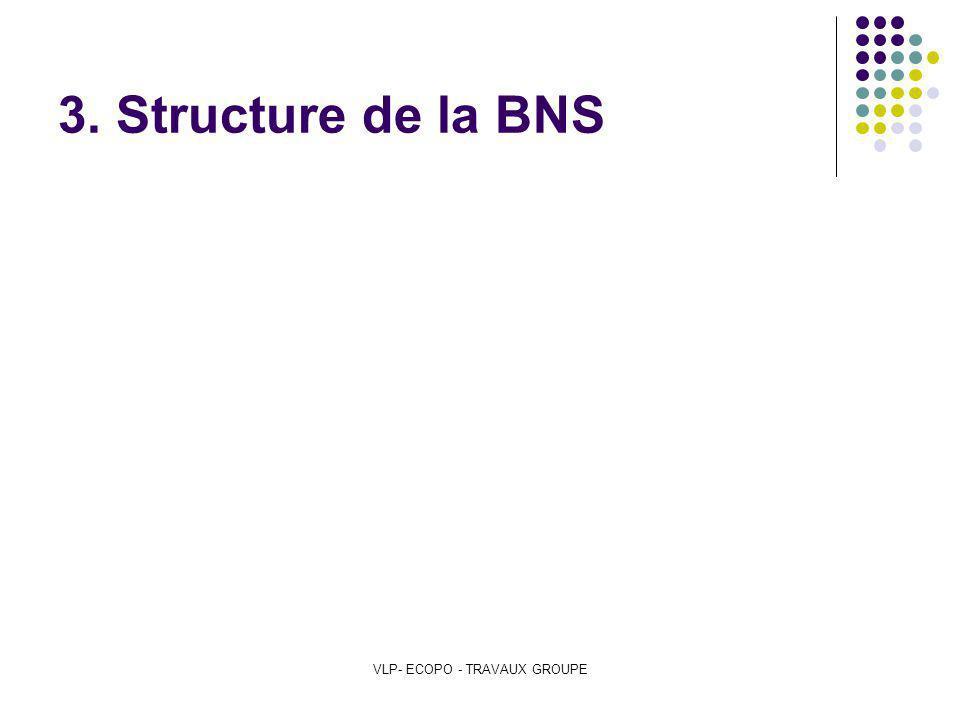 VLP- ECOPO - TRAVAUX GROUPE 3. Structure de la BNS