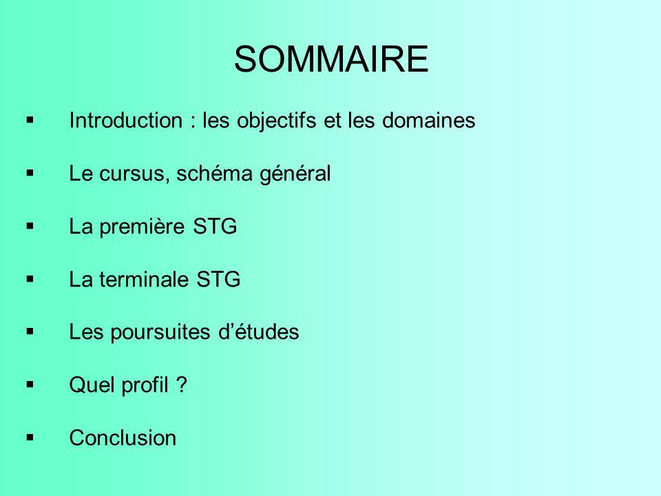 SOMMAIRE  Introduction : les objectifs et les domaines  Le cursus, schéma général  La première STG  La terminale STG  Les poursuites d'études  Q