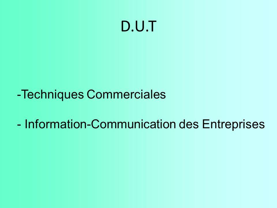 D.U.T -Techniques Commerciales - Information-Communication des Entreprises