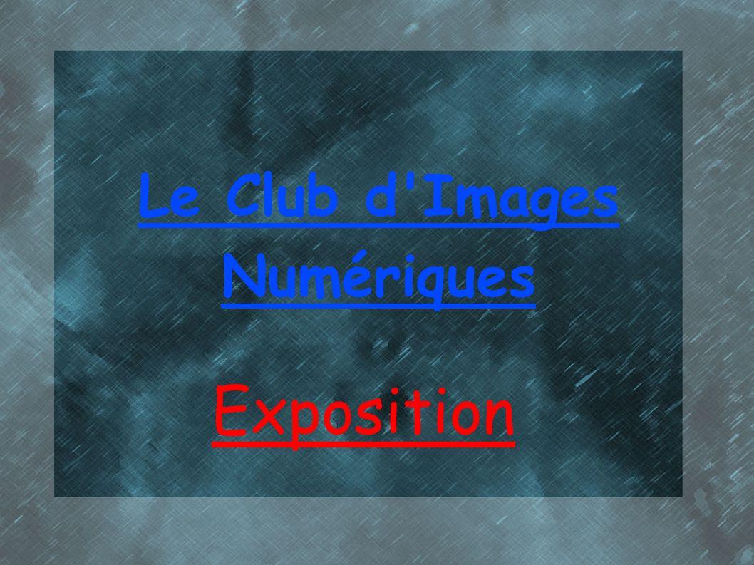 Le Club d'Images Numériques Exposition