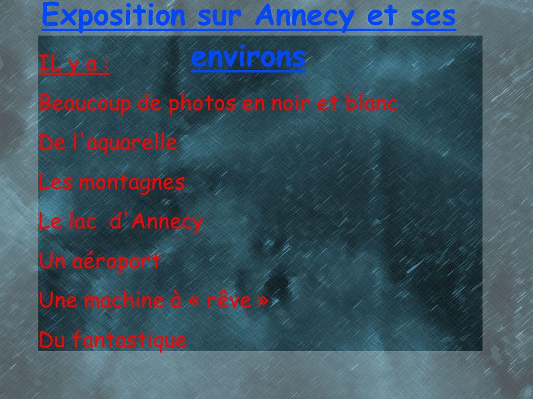 Exposition sur Annecy et ses environs IL y a : Beaucoup de photos en noir et blanc De l'aquarelle Les montagnes Le lac d'Annecy Un aéroport Une machin
