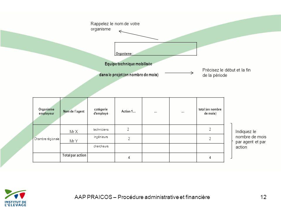 AAP PRAICOS – Procédure administrative et financière12 Organisme : Equipe technique mobilisée dans le projet (en nombre de mois) Organisme employeur N