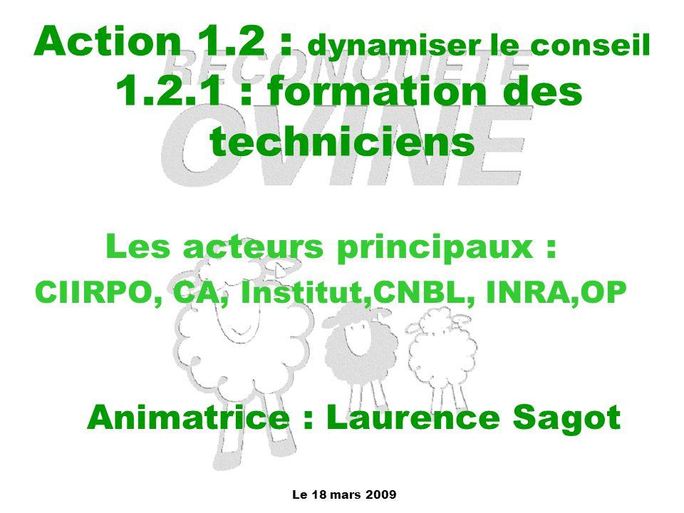 Le 18 mars 2009 Action 1.2 : dynamiser le conseil 1.2.1 : formation des techniciens Les acteurs principaux : CIIRPO, CA, Institut,CNBL, INRA,OP Animat