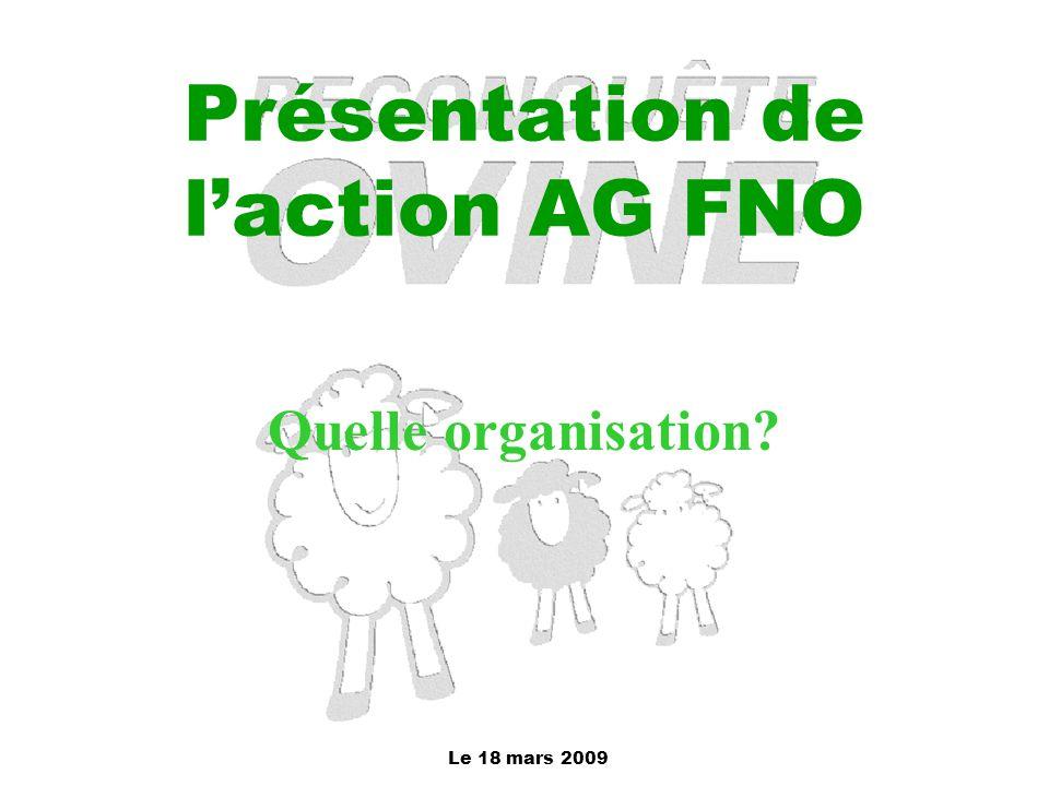 Le 18 mars 2009 Présentation de l'action AG FNO Quelle organisation?