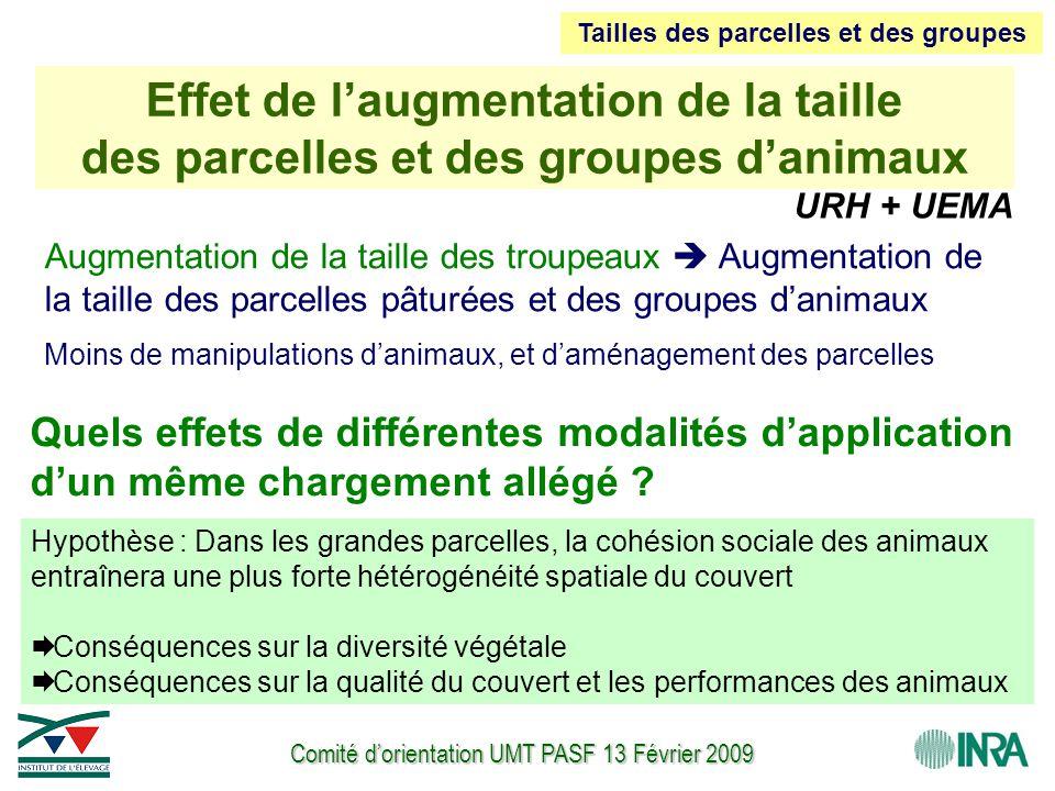 Comité d'orientation UMT PASF 13 Février 2009 URH + UEMA Augmentation de la taille des troupeaux  Augmentation de la taille des parcelles pâturées et