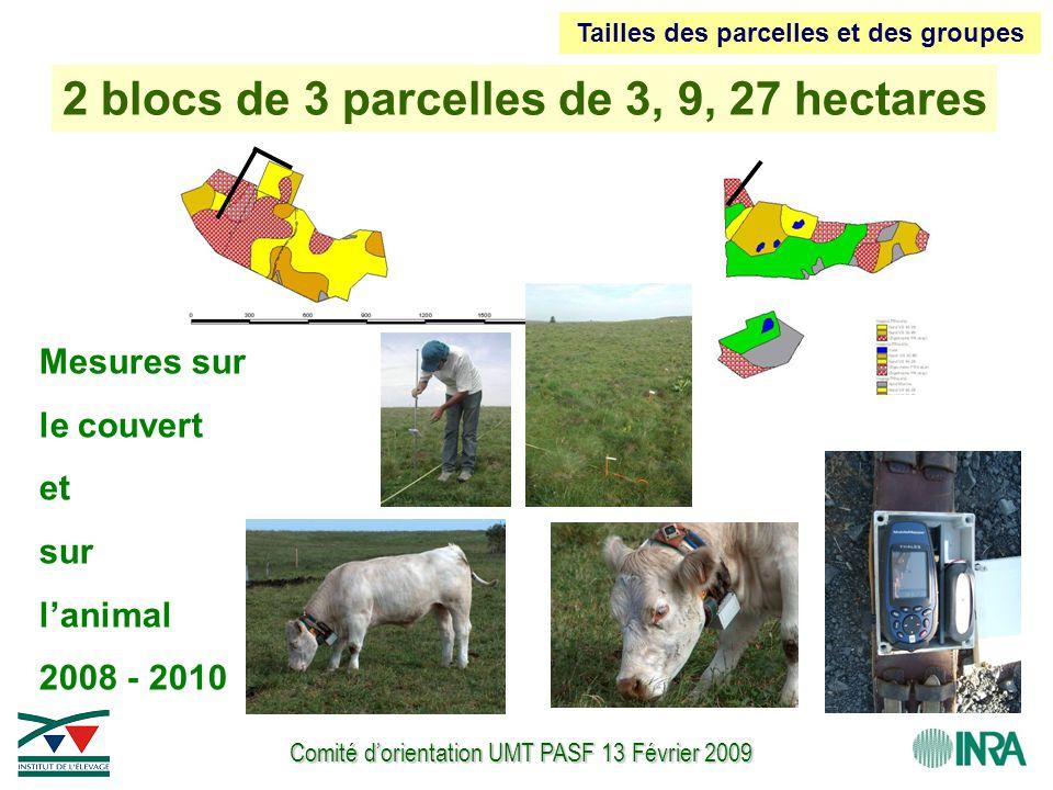 Comité d'orientation UMT PASF 13 Février 2009 2 blocs de 3 parcelles de 3, 9, 27 hectares Mesures sur le couvert et sur l'animal 2008 - 2010 Tailles d