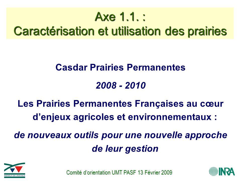 Comité d'orientation UMT PASF 13 Février 2009 Casdar Prairies Permanentes 2008 - 2010 Les Prairies Permanentes Françaises au cœur d'enjeux agricoles et environnementaux : de nouveaux outils pour une nouvelle approche de leur gestion Axe 1.1.