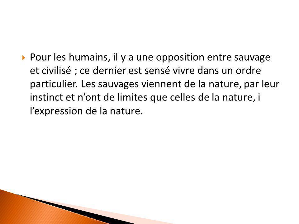 Pour les humains, il y a une opposition entre sauvage et civilisé ; ce dernier est sensé vivre dans un ordre particulier. Les sauvages viennent de l