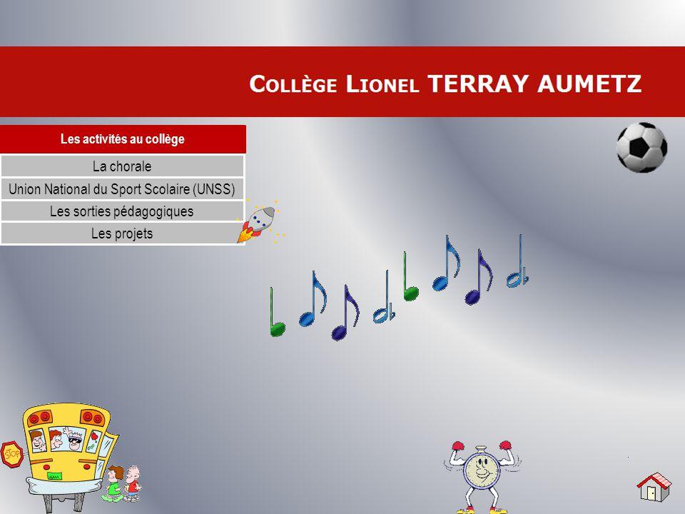 Les activités au collège La chorale Les sorties pédagogiques Les projets Union National du Sport Scolaire (UNSS)