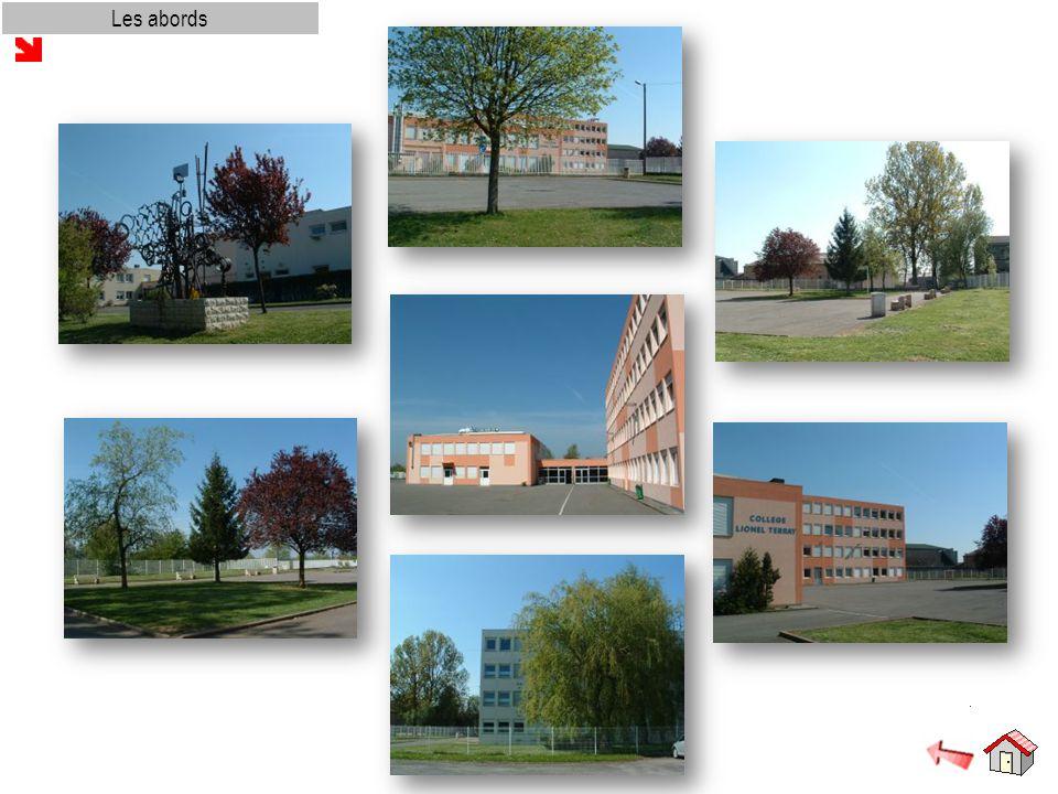 Réussir au collège L'accompagnement éducatif L accompagnement éducatif : pour qui .