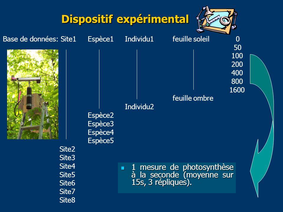 Dispositif expérimental 1 mesure de photosynthèse à la seconde (moyenne sur 15s, 3 répliques).