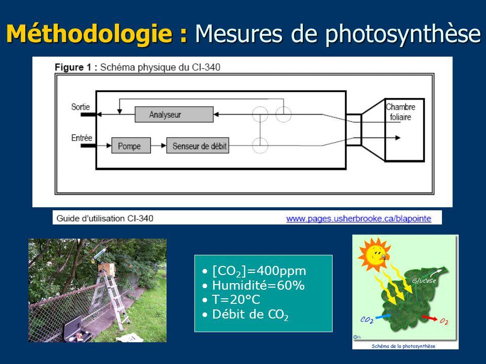 Méthodologie : Mesures de photosynthèse [CO 2 ]=400ppm Humidité=60% T=20°C Débit de CO 2